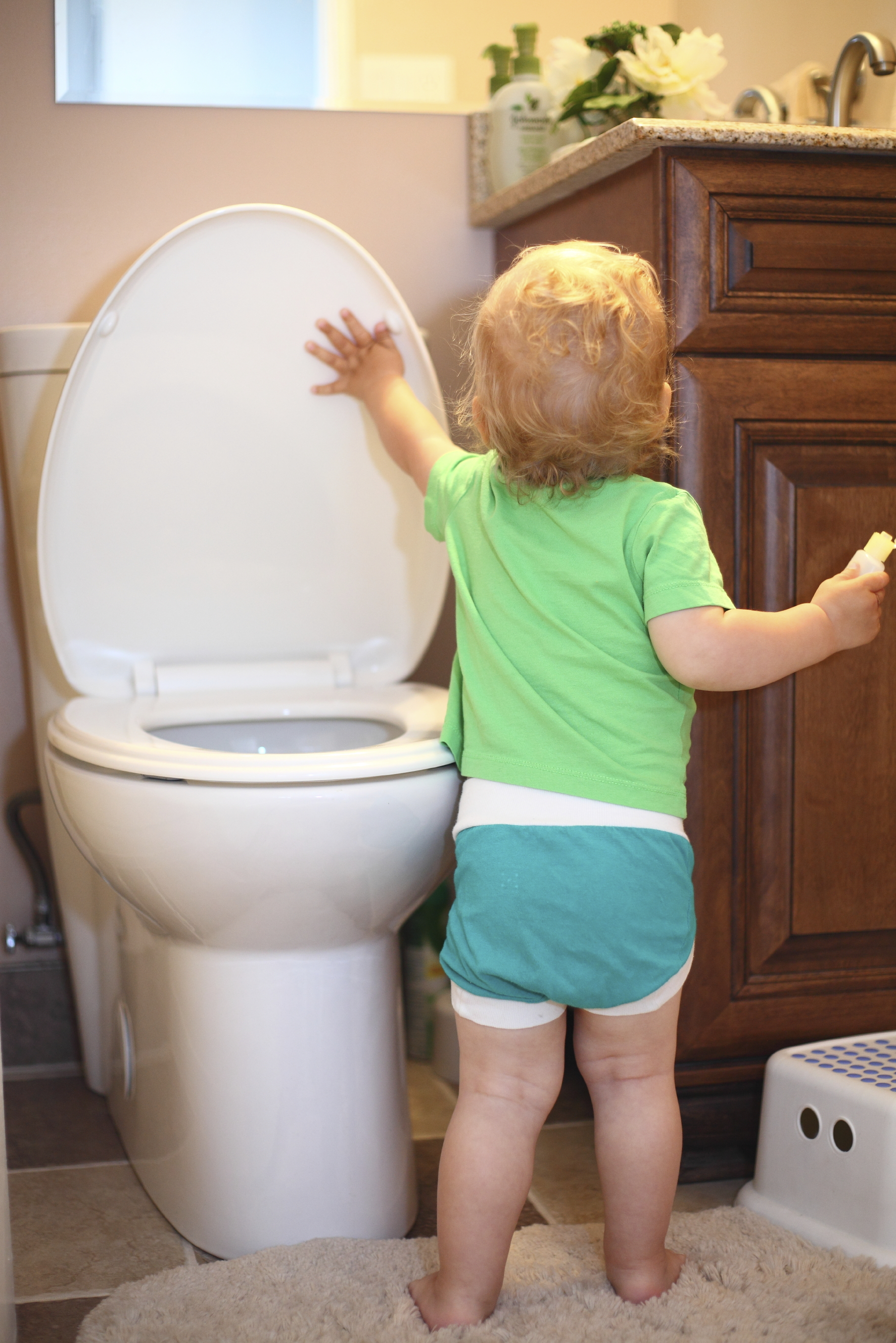 Childproofing A Water Hazard In Your Home The Toilet